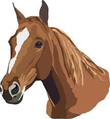 Cover photo for Troxler Encourages Horse Owners to Vaccinate