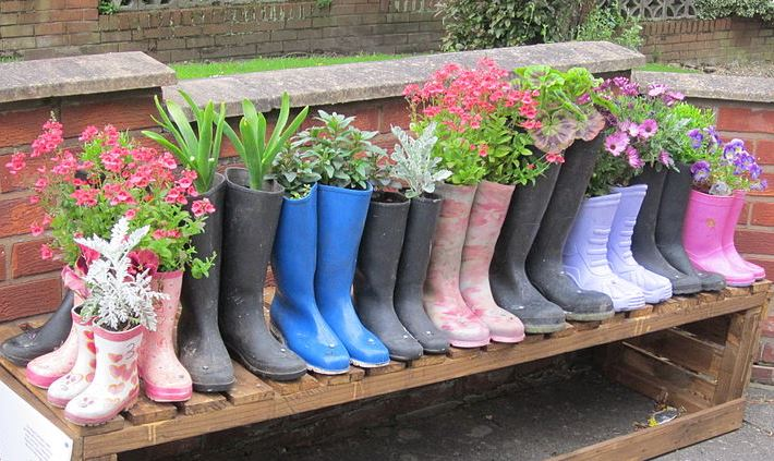 Image of boots with plants