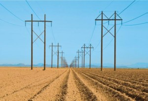 Cover photo for A Guide for Farmers: Staying Safe Around Power Lines