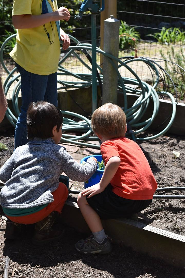 Children learning about raised bed gardening