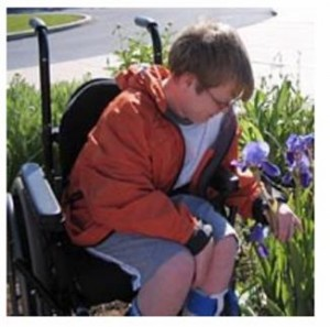 Cover photo for Designing the Special Needs Garden