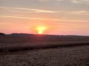 Washington County Farmland with Sunset
