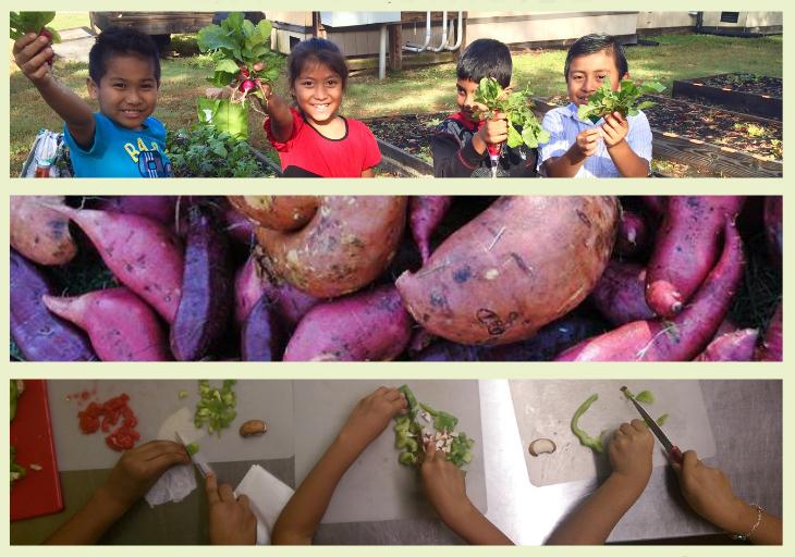 children gardening and cooking