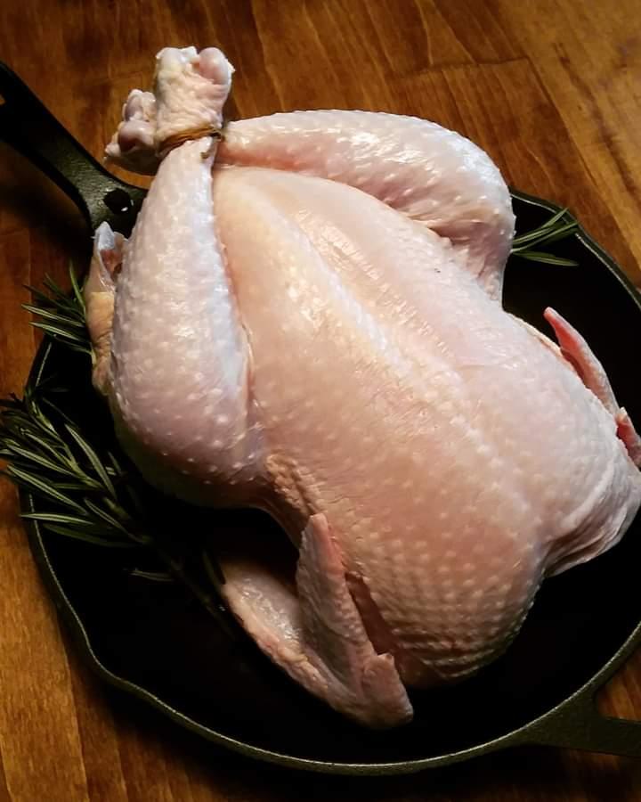 pasture-raised chicken