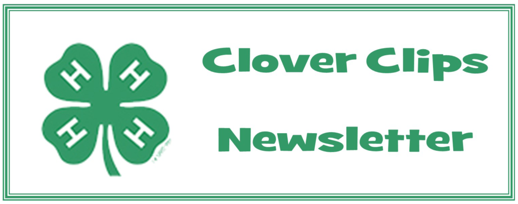 4-H clover clips