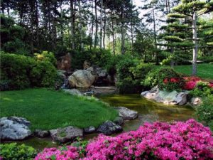 Cover photo for Lawn and Garden Questions? We Can Help!