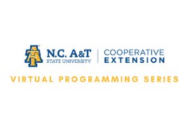 Extension Virtual Programming