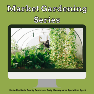 Green background with computer monitor clipart with an image of a person in a garden area with lettuce and tomatoes in the foreground.