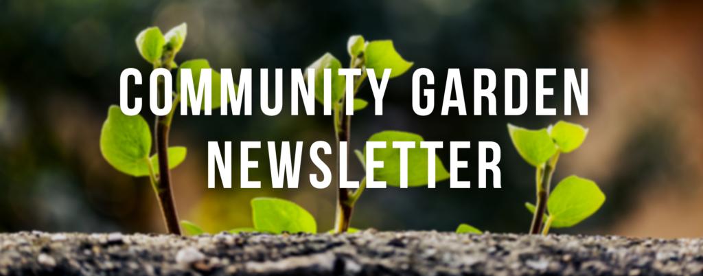 Community Garden Newsletter