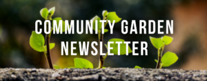 Community Garden Newsletter