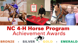 Cover photo for NEW! NC 4-H Horse Program Achievement Awards