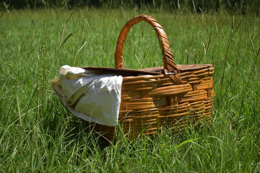picnic basket in grass